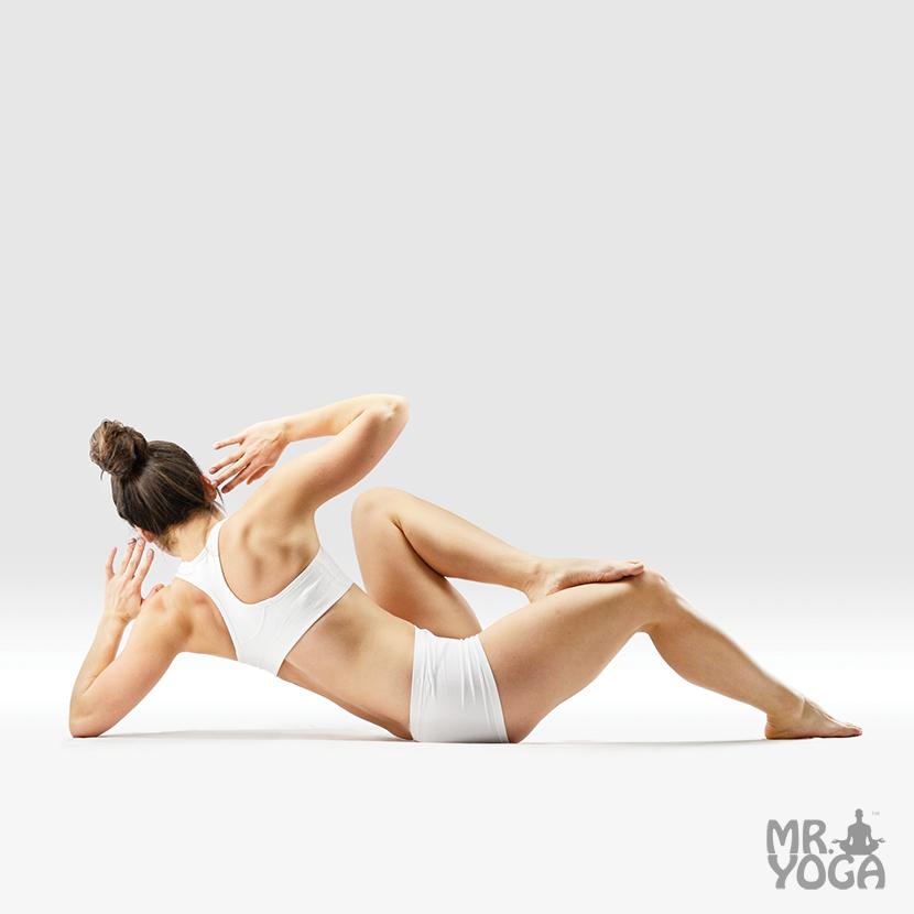 Yoga-Pose-Six-Triangles-Pose-Shatkonasana