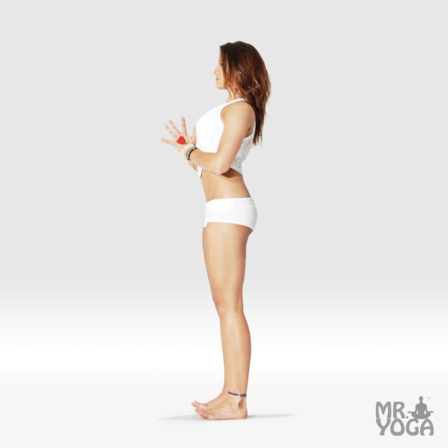 Mountain Pose – Hands in Prayer Pose